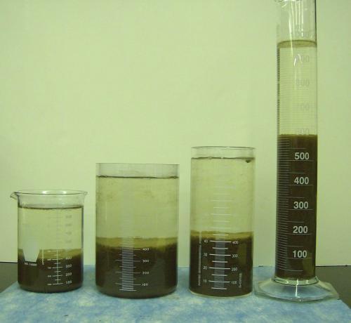 Đánh giá hiệu quả của các loại men vi sinh xử lý nước thải